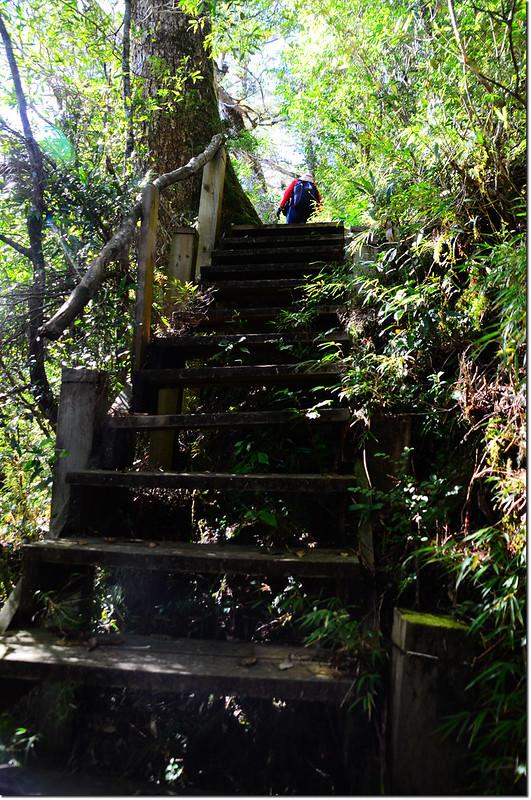 基那吉山木棧階梯