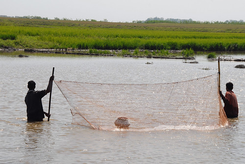 Small-scale fisheries, Bangladesh. Photo by WorldFish, 2007.