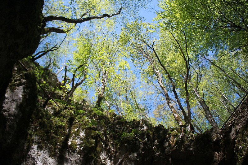 croatia-Plitvice LakesNational Park -克羅地亞-16湖國家公園-17docintaipei (52)