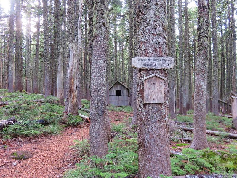 WWII signal Hut