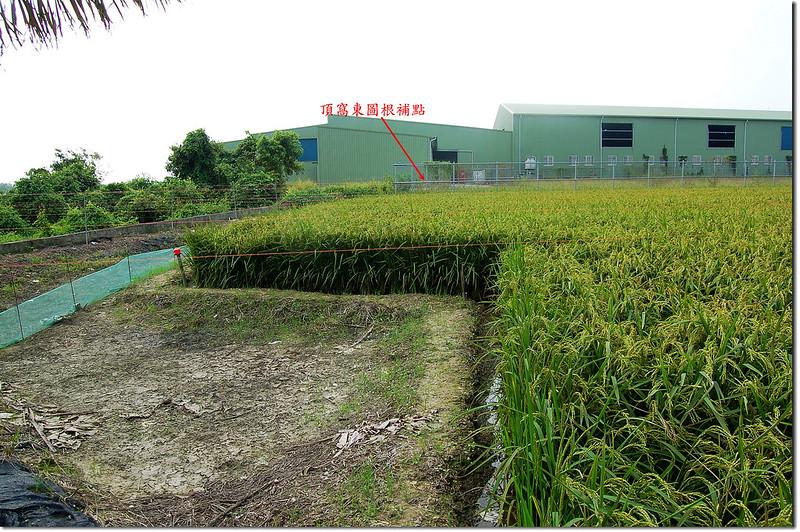 頂窩東台灣省政府圖根補點點位 1