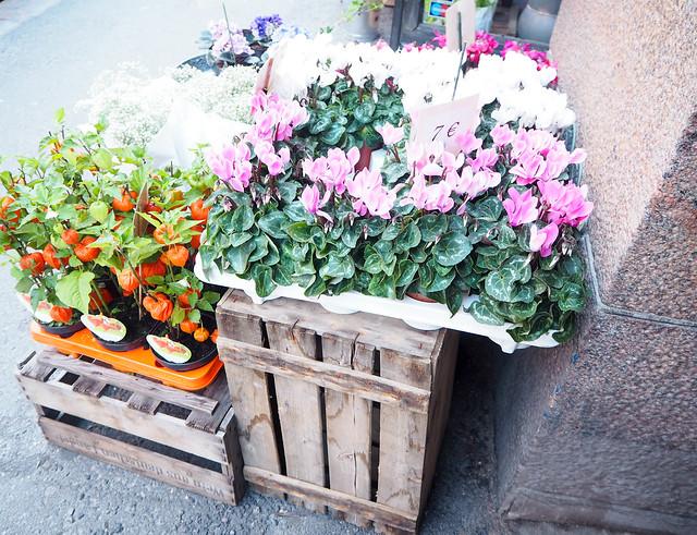 helsinki, suomi, finland, ullanlinna, kantakaupunki, korkeavuorenkatu, cute street, street vibes, street view, kukkia, flowers, fresh flowers, tuoreita kukkia, puu laatikot, wooden boxes,autumn, fall, syksy,