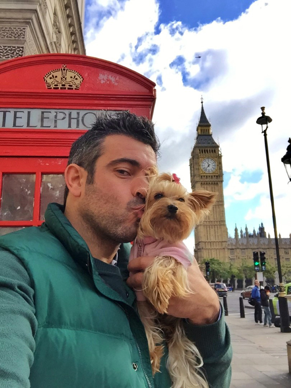 Viajar con Mascota mascotas - 30639350290 3ed2a7b517 o - Cómo viajar con perros y mascotas