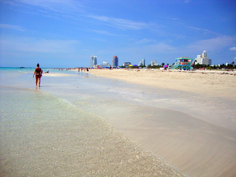 Qué hacer y ver en Miami, Florida Qué hacer y ver en Miami Qué hacer y ver en Miami 31012051010 51b89ff72b o