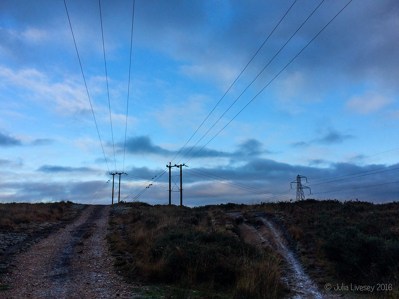 Power lines on Upton Heath