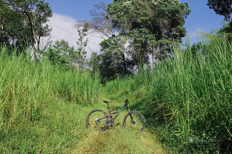 Jalur Offroad di Kebun Rumput Gajah