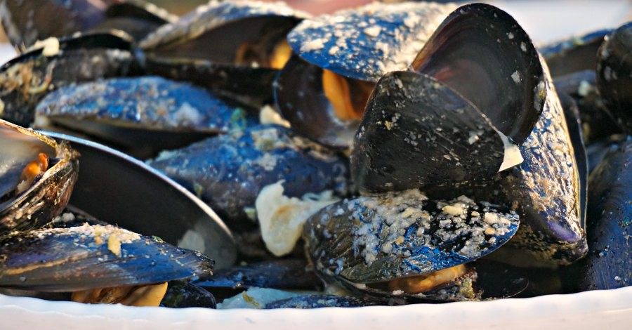 Ston Mussels