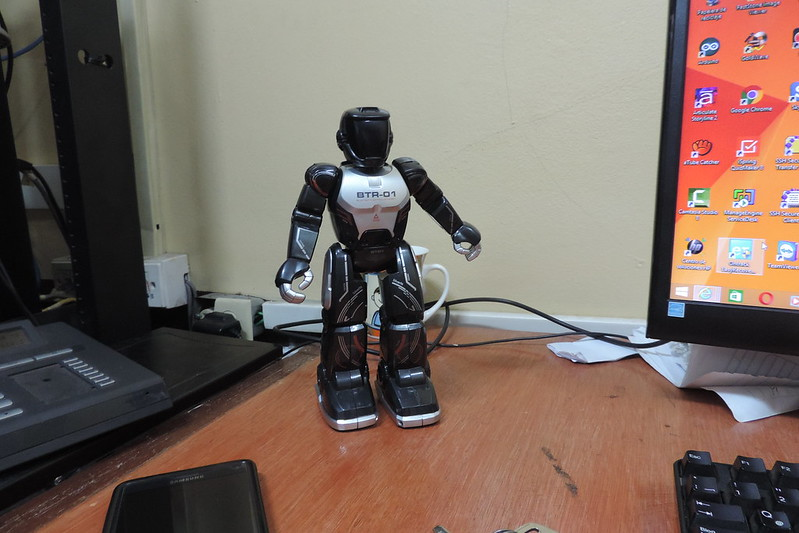 Micro Robotica