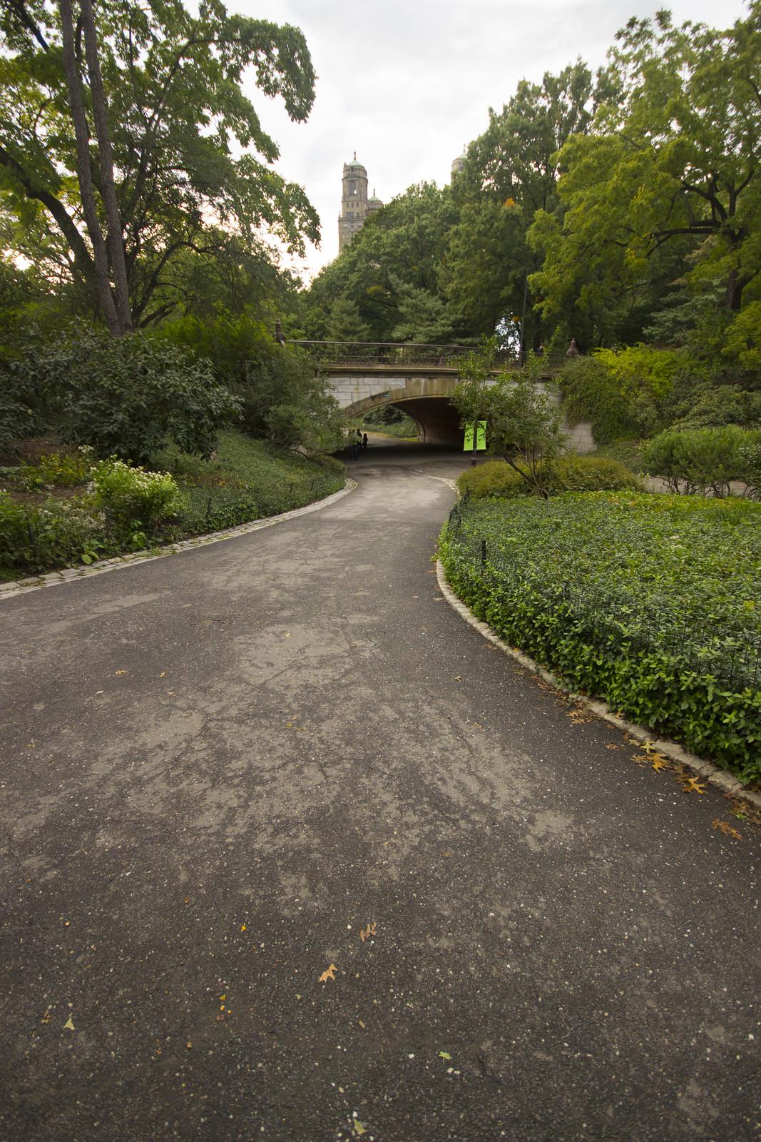 central park 4