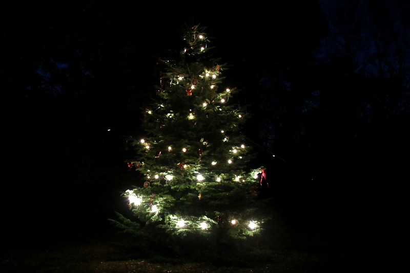 Weihnachtsbeleuchtung 2016