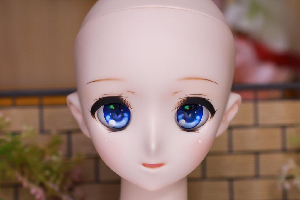 DDH-08(N)Sc-b-head-1