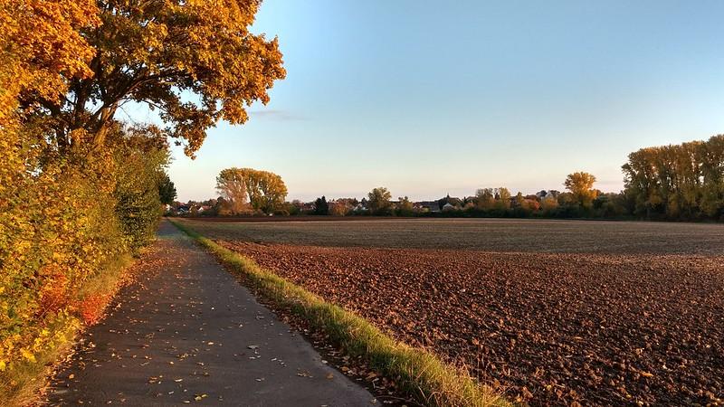 Selztal zwischen Wahlheimer Hof und Hahnheim