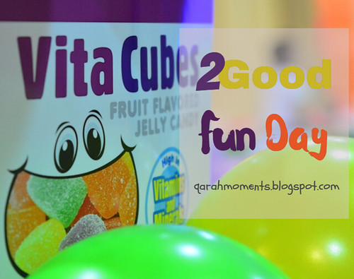 Vita Cubes 2Good Fun Day