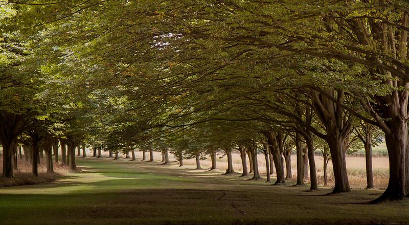 3690 Radley, Oxfordshire