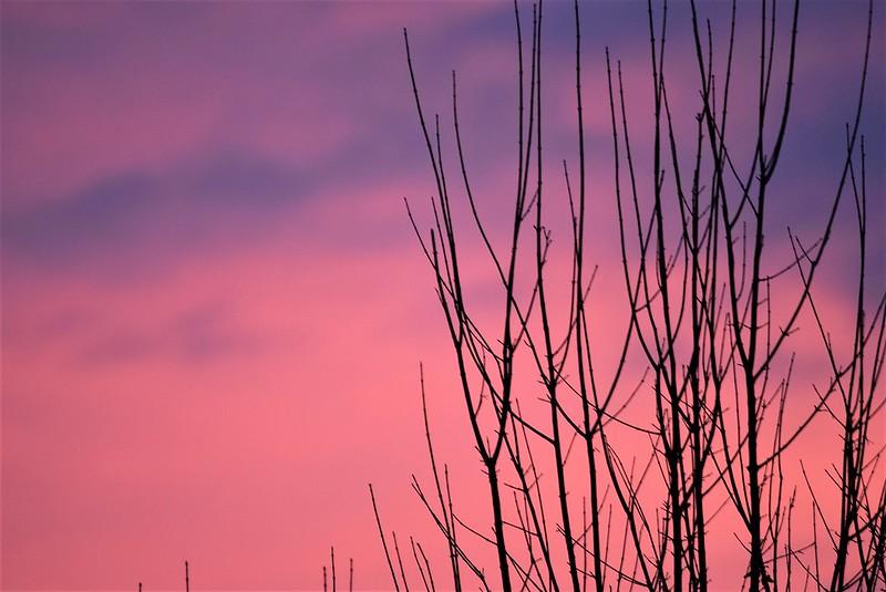 Sunset 24.12 (1)