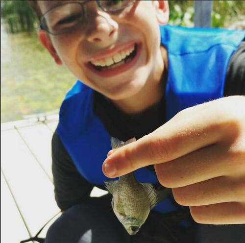 wee fish