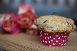 peanutbutter chocolate muffins