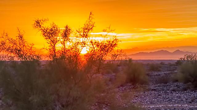 Sunset-12-7D1-112616