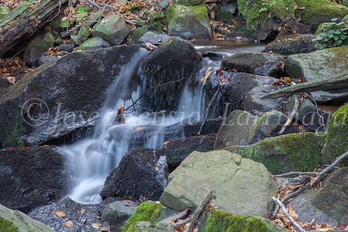 Parque Natural de #Gorbeia #DePaseoConLarri #Flickr      -1449
