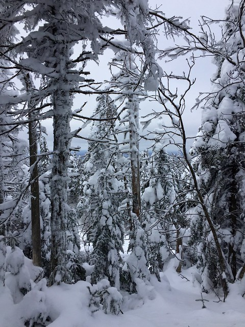 Winter hike at the summit, Mt. Tremblant
