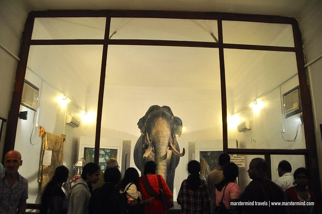 Special Museum for Raja in Kandy, Sri Lanka