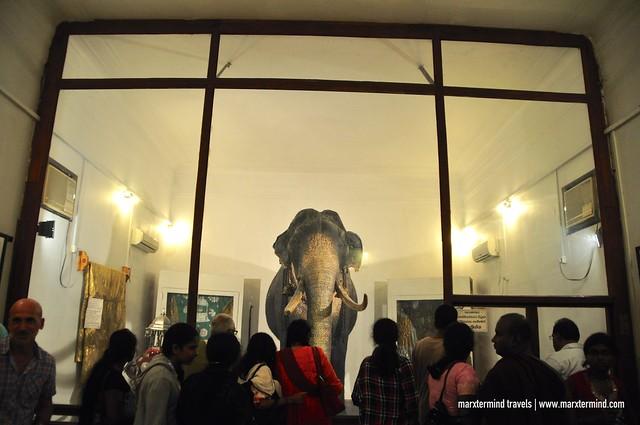 Special Museum for Raja in Kandy, Sri Lanka