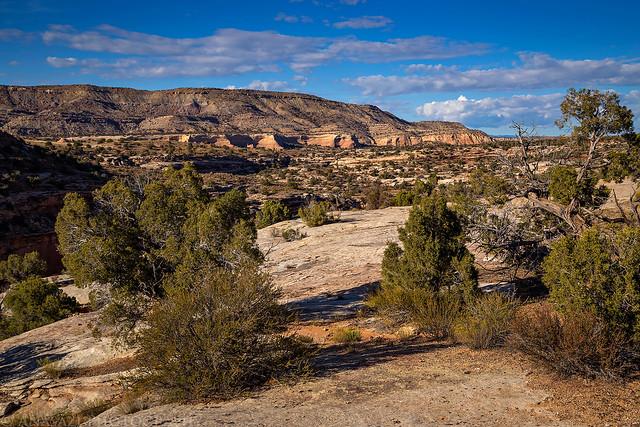 Jouflas Trail View