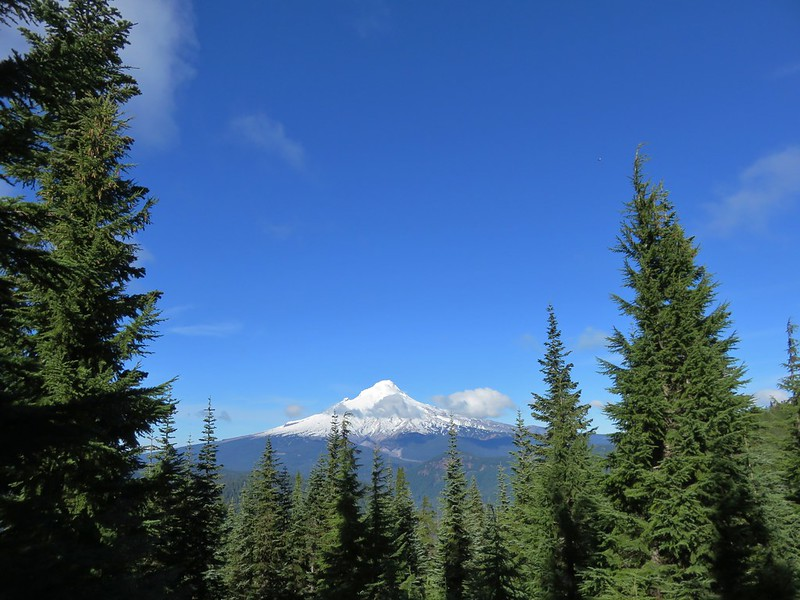 Mt. Hood from Frog Lake Butte