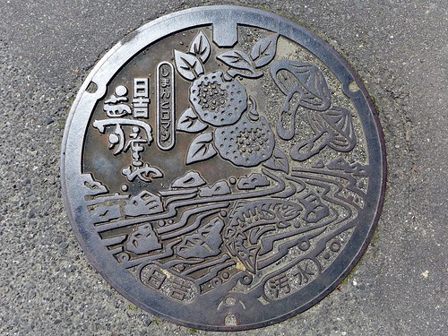 Hiyoshi Ehime, manhole cover (愛媛県日吉村のマンホール)