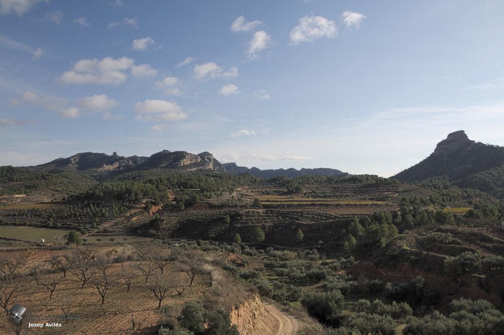 Vistes de la Terra Alta des de la Via Verda de Bot