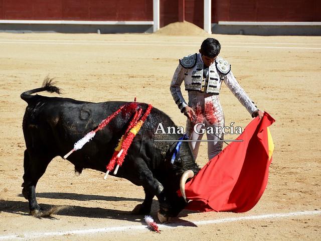 Alejandro Adame 11