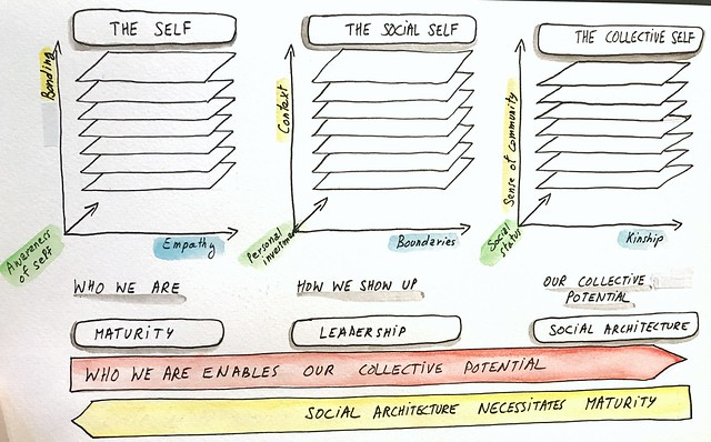 The continuum of maturity, leadership and social architecture