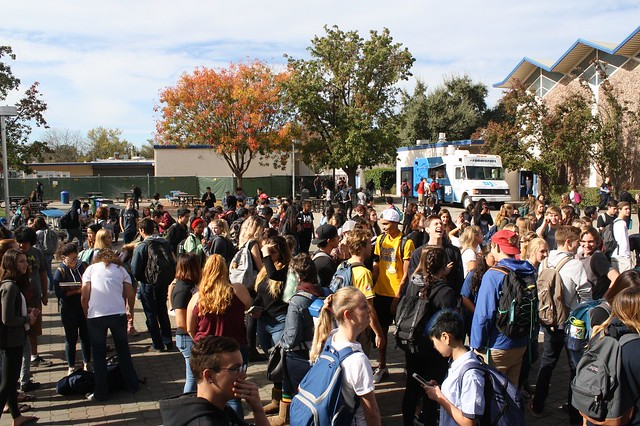 DHS Walkout