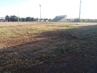 Un manto di erbacce incornicia il terreno di gioco
