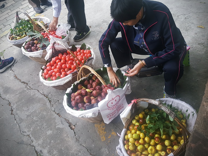 fruit seller China