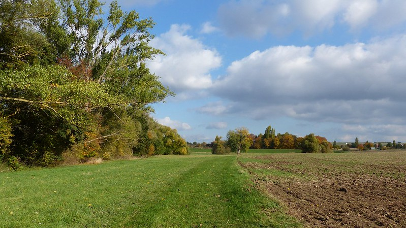 Selztal zwischen Elsheim und Nieder-Olm