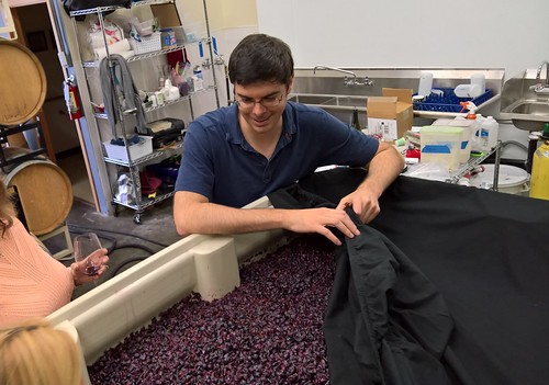 Kevin White & crushed grapes at his winery