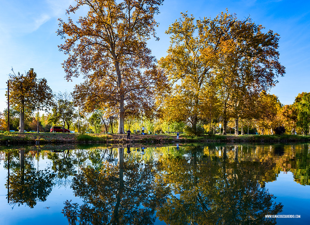 Autumn in Aranjuez 18