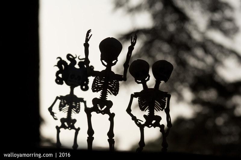 BJD Skeletons
