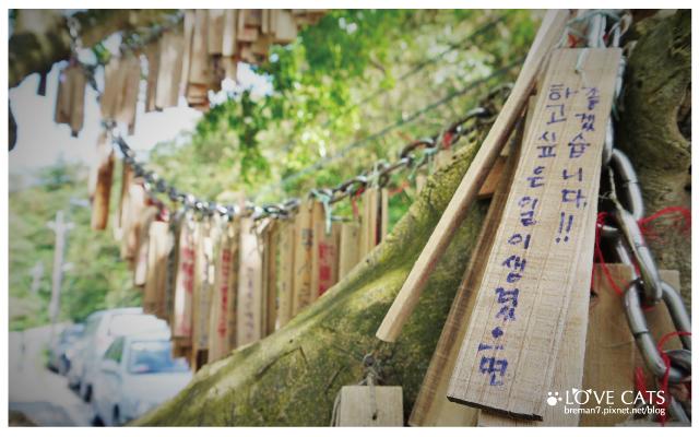 侯硐貓村-39
