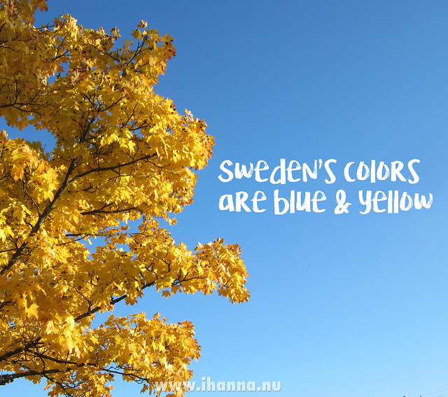 Sweden's flag are these colors: blue and yellow photo copyright Hanna Andersson @ihanna #sweden