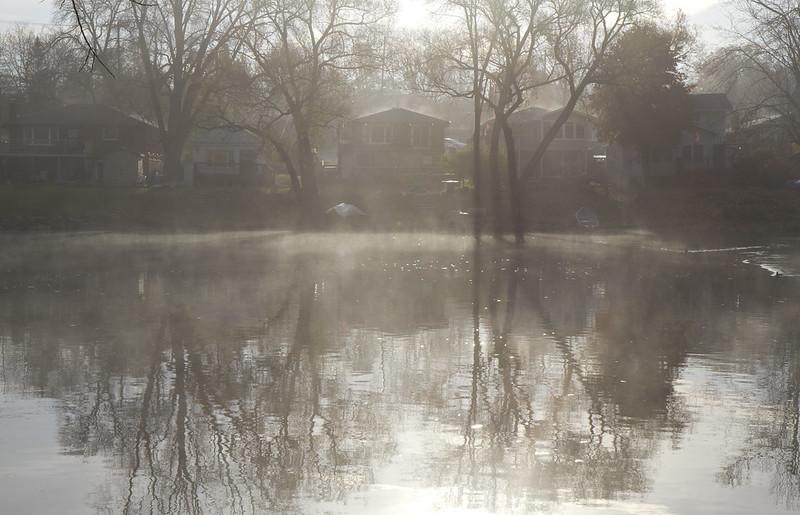 foggy morning7