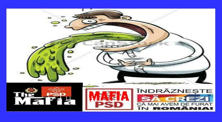 Pentru jegurile ce voteaza PSD-ul, educatia si moralitatea unui individ nu conteaza