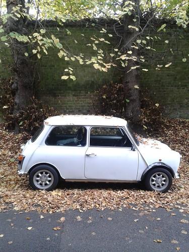 Fitzroy Park Mini