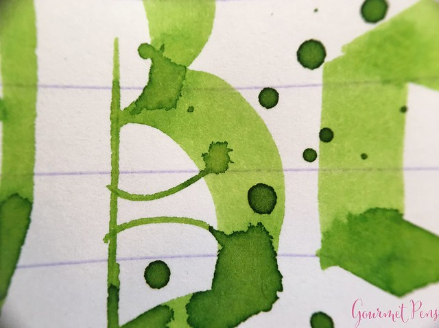 Ink Shot Review Bookbinders Emerald Boa @AndersonPens 10
