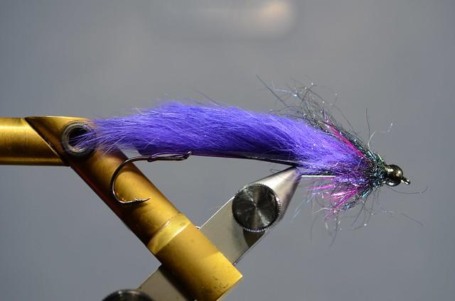 Purple Prospector pic
