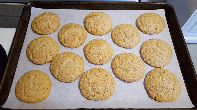 Lemon-Cardamon Sugar Cookies, fresh out of the oven