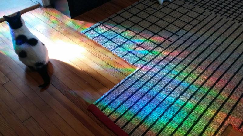 Rainbow Lloyd