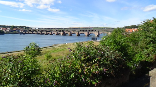 Berwick upon Tweed Aug 16 (3)