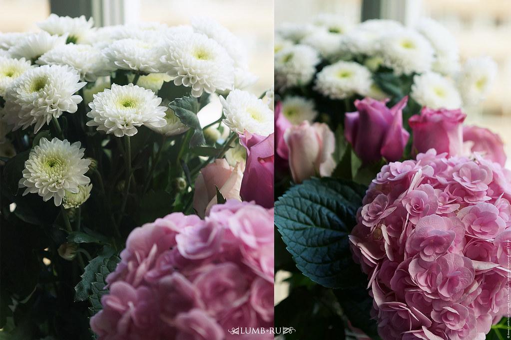 Цветы на мой день рождения